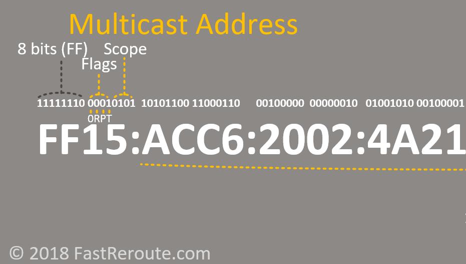 Figure 9. IPv6 Address Multicast Address Flags
