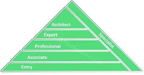 Cisco Certification Levels