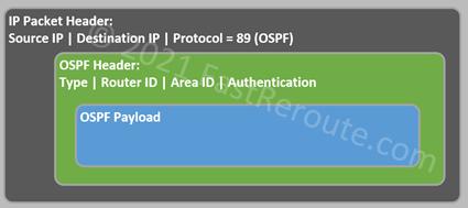 Figure 1. OSPF Header