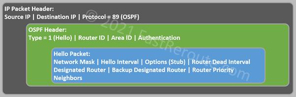 Figure 8. Hello Packet